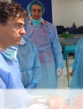 curso Anatómico Disección